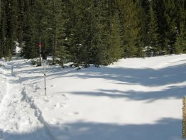 Hang a right at this junction to continue on, otherwise you end up in the Sawmill snowshoe/ski loops.