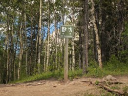 At the top of the hill you will find this sign. Hang a right and follow the hiking trail.